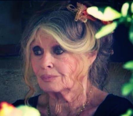 """""""На костылях и с морщинками"""": 87-летнюю Брижит Бардо запечатлели на прогулке"""